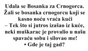VIC DANA: Udala se Bosanka za Crnogorca