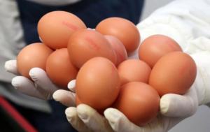 Kako da znate da je JAJE od bolesne kokoške: 3 stvari to otkrivaju!